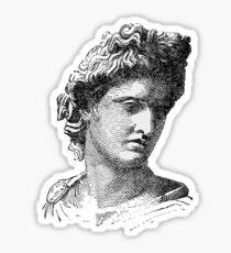 Portrait of Apollo Belvedere Sticker