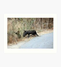 """Does this remind you of   """"Eeyore""""? Art Print"""