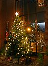 Christmas Tree  by Mary Campbell