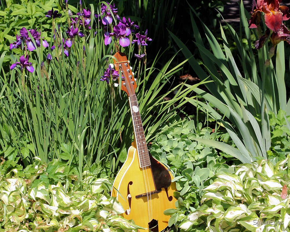 Mandolin And Irises by SmilinEyes