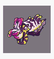 Flamboyant Cuttlefish Photographic Print