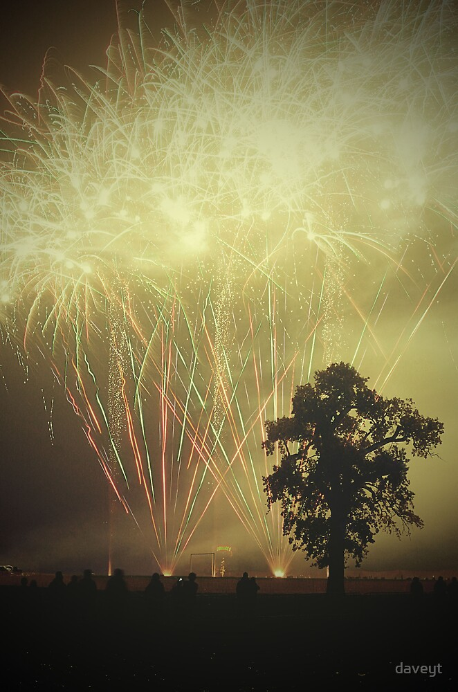 Firework_Night by daveyt