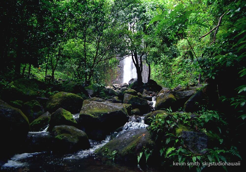 Manoa Falls Stream by kevin smith  skystudiohawaii