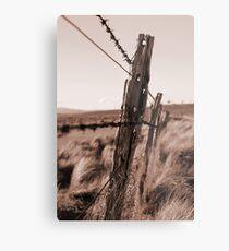 Barbed Fence Metal Print