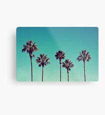 Kalifornische Palmen Metallbild