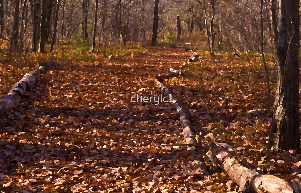 Follow the golden Path by cherylc1