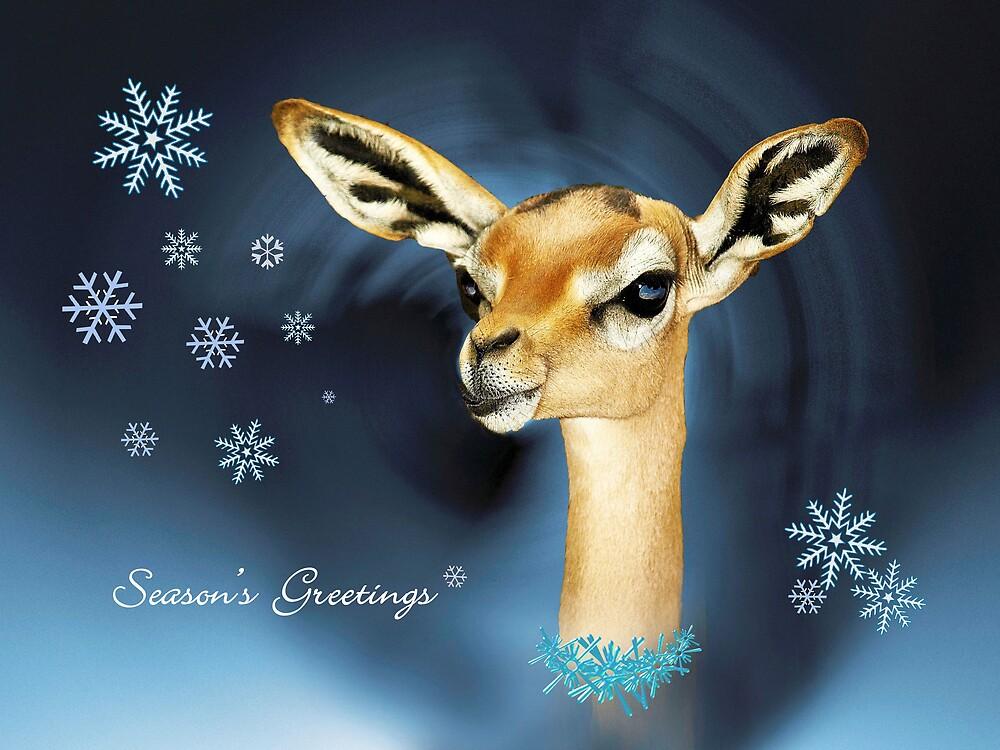 Deerest of Greetings by LovelyFocus