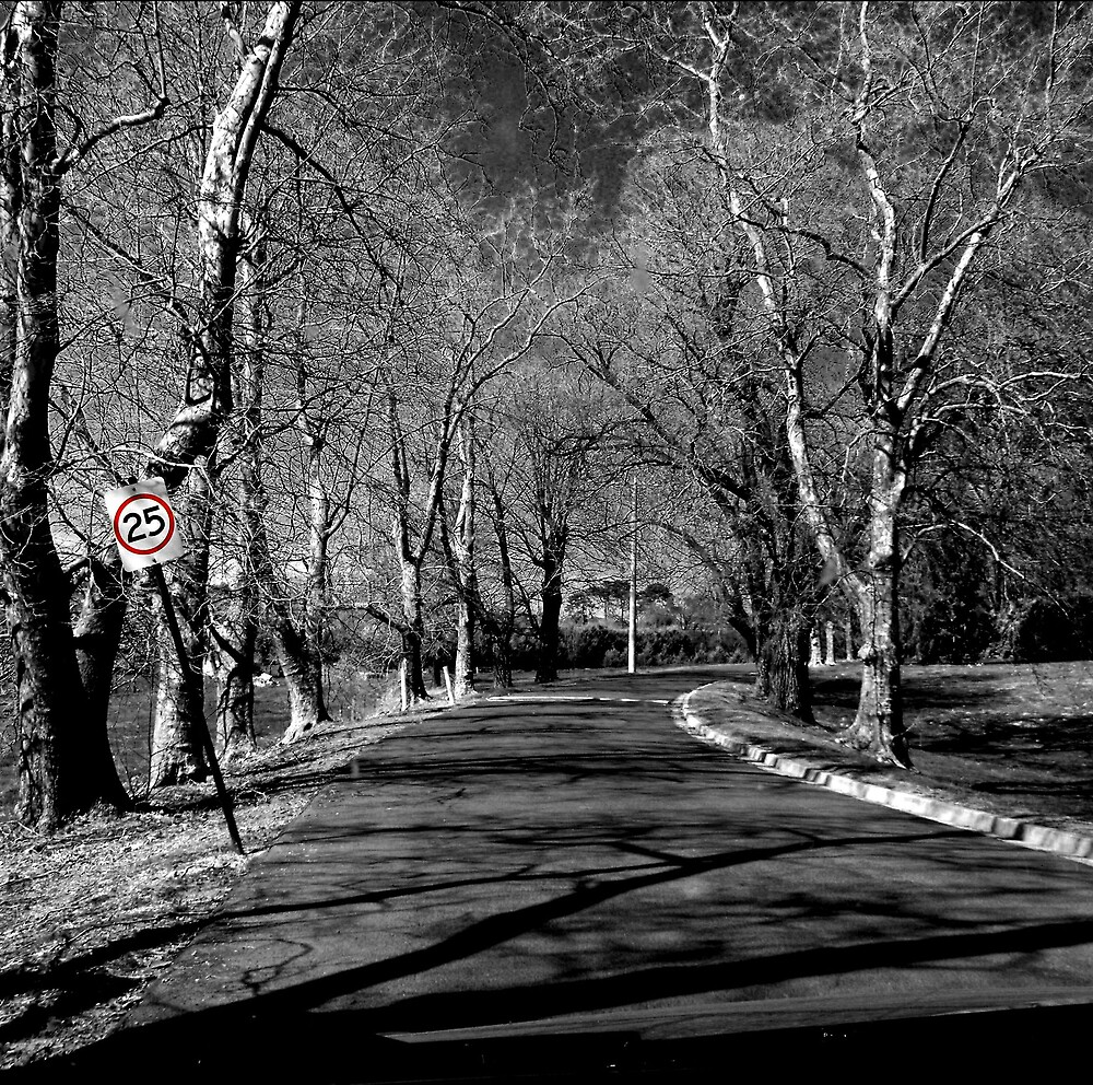 The Road to Sanity by Simmone