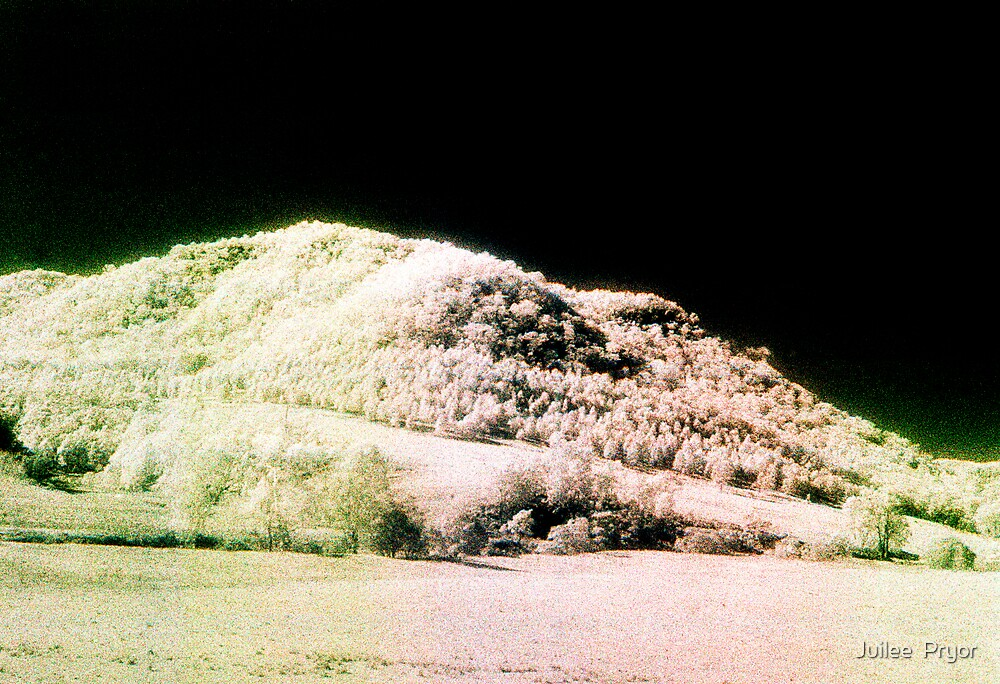 Landscape for Piet Mondrian # 2 by Juilee  Pryor
