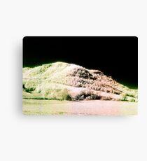 Landscape for Piet Mondrian # 2 Canvas Print