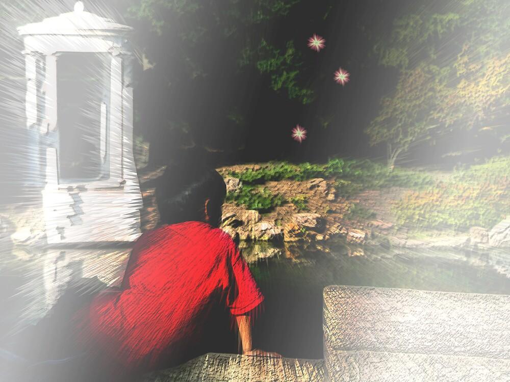 Dare to Dream by Judi Taylor