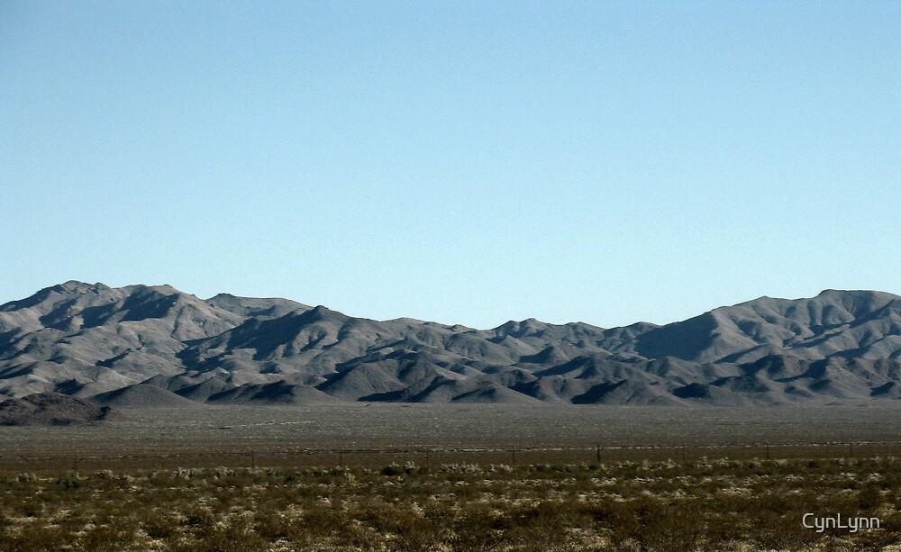 Arizona or California?? by CynLynn