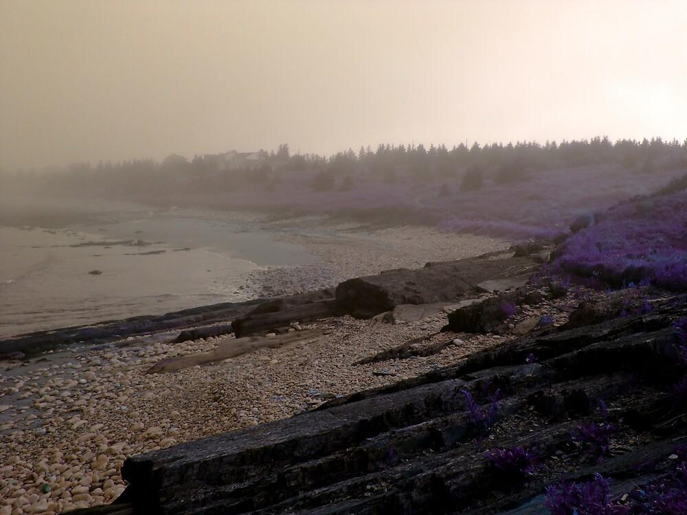 the beach 2 by Jason LeRue