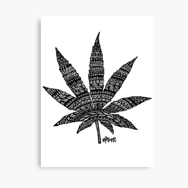 Chronic Leaf Canvas Print
