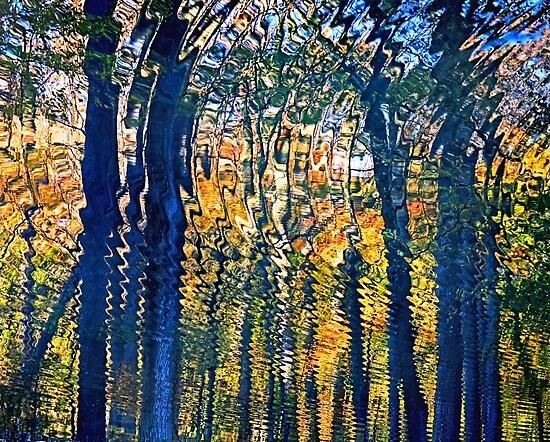 Nature's Ripples - Thoughtful Reflection in Fall Season by 31images