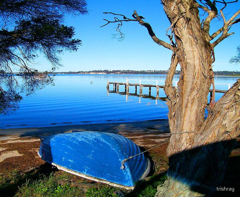 St Helens Tasmania.  Across the Bay by trishray