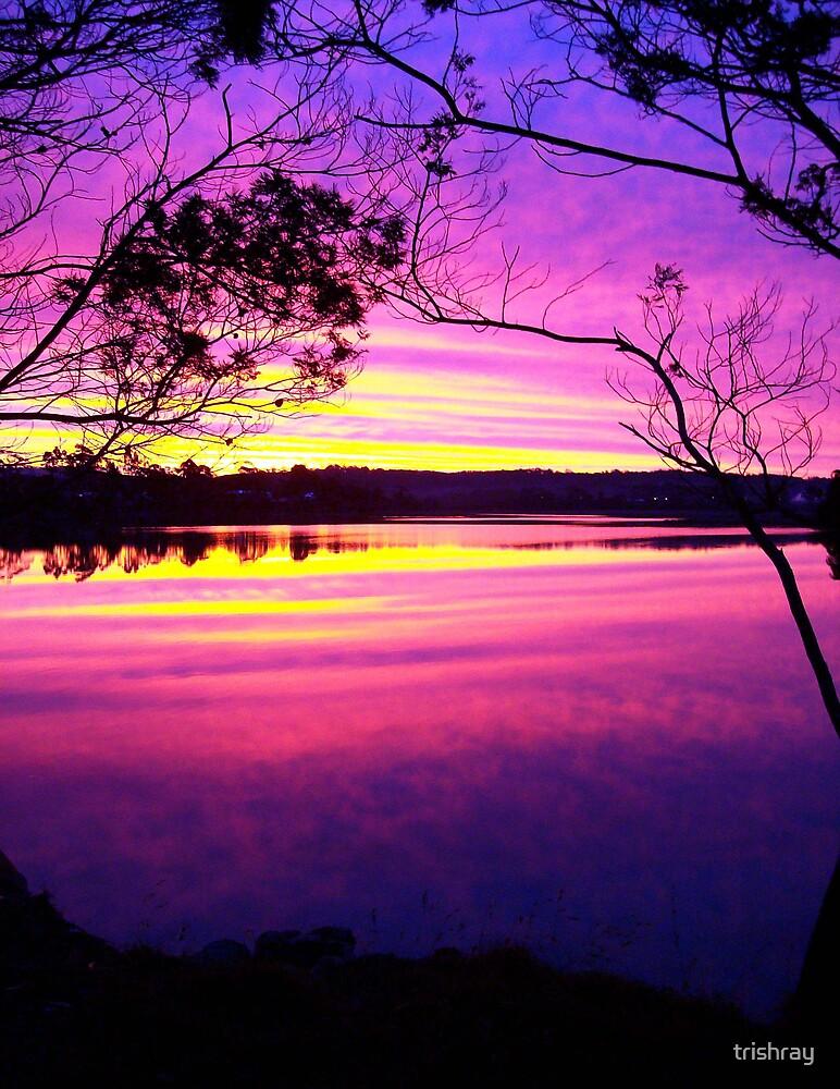 Medea Cove.  St Helens,  Tasmania by trishray