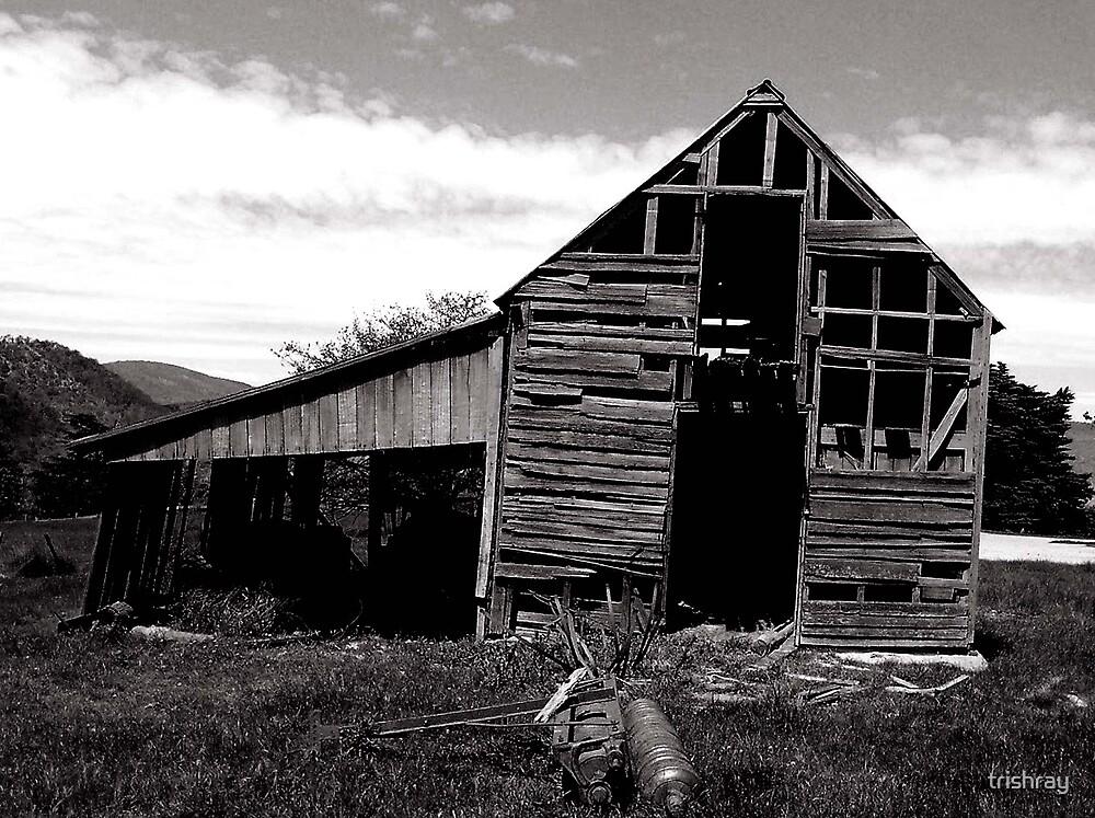 Old Barn by trishray