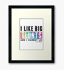 I Like Big Blunts and I Cannot Lie Framed Print