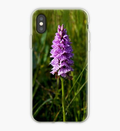 Spotted Orchid, Kilclooney, Donegal iPhone Case