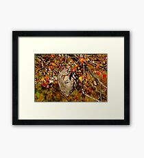Natural Architecture Framed Print