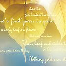 Frost Quote by Lydia-Ham