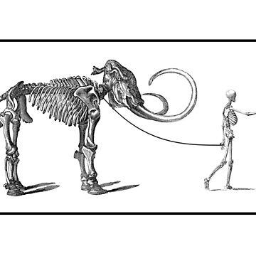 Pet Mammoth. white by metropol