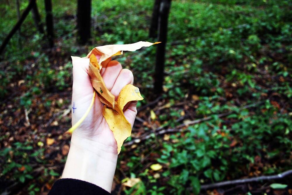 leaf by Kris Z
