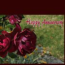 Happy Anniversary Roses by KazM