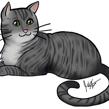 Dark Gray Tabby Cat by jameson9101322