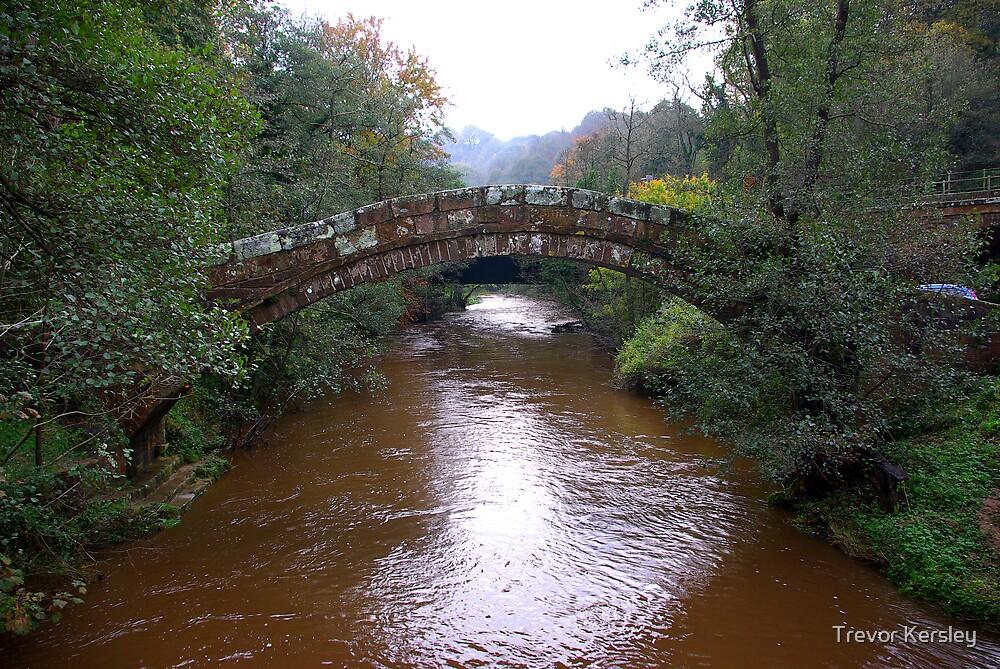 Begars Bridge by Trevor Kersley