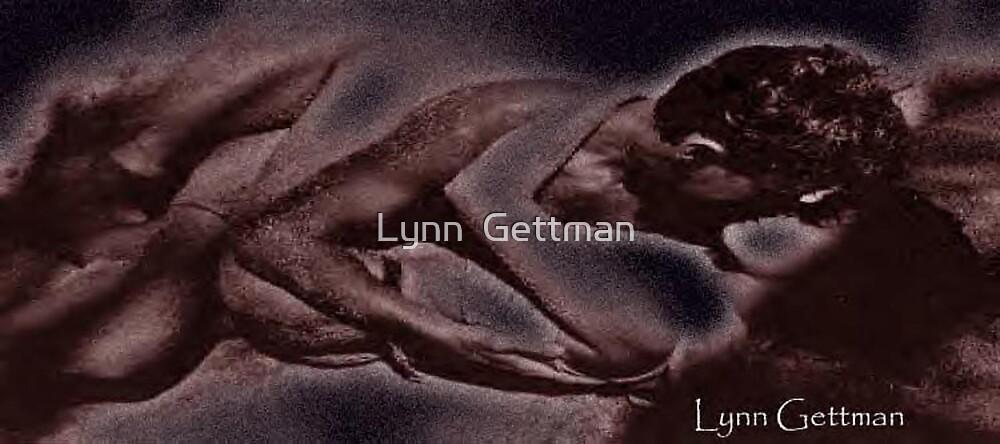 Passion Hesitates by Lynn  Gettman