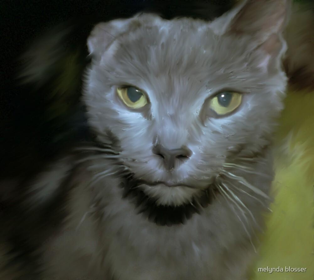 lucy by melynda blosser