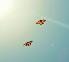Monarch Sky Love by RichCaspian