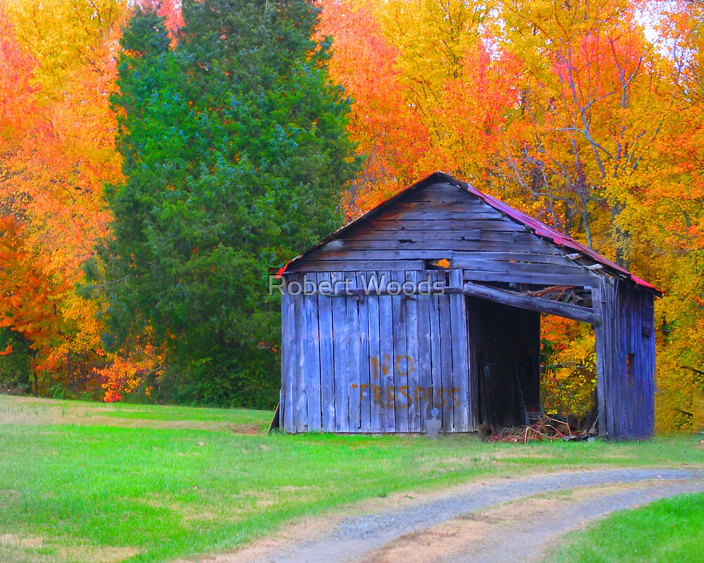 Barn on Old Hollow by Robert Woods