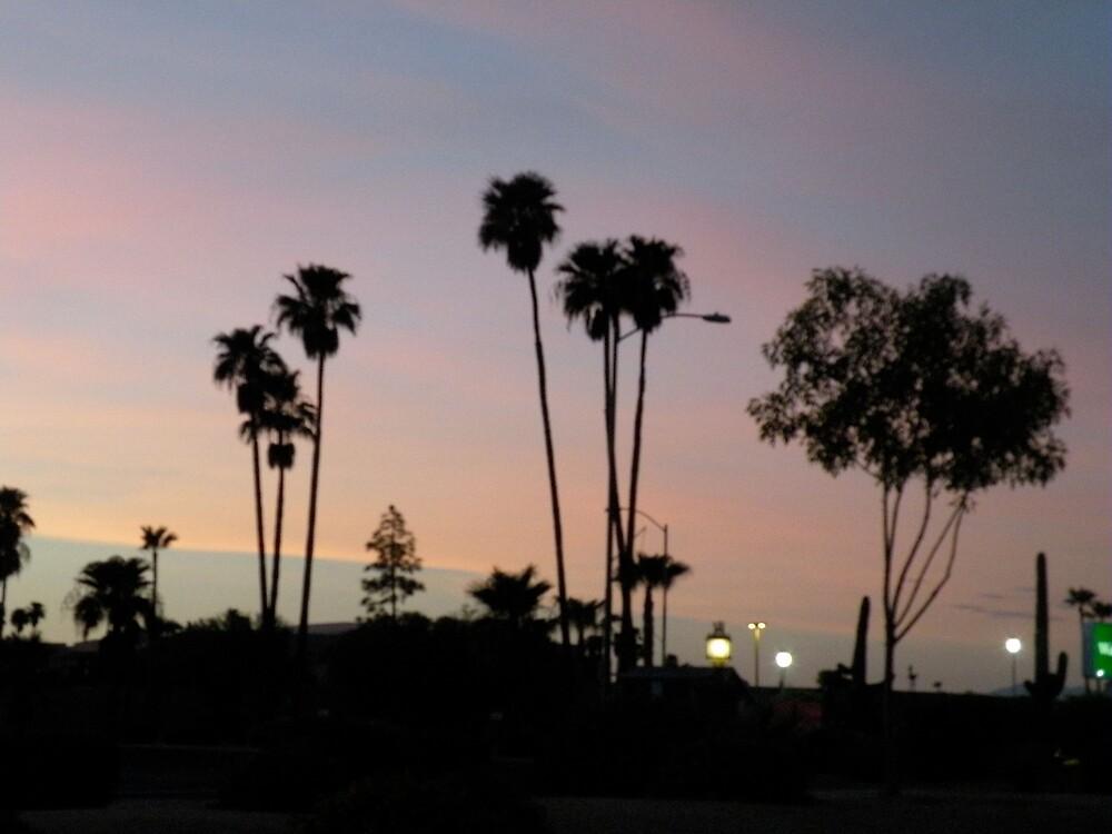 Az sunset by Bonnie Pelton