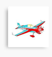 Plane in the skies Canvas Print