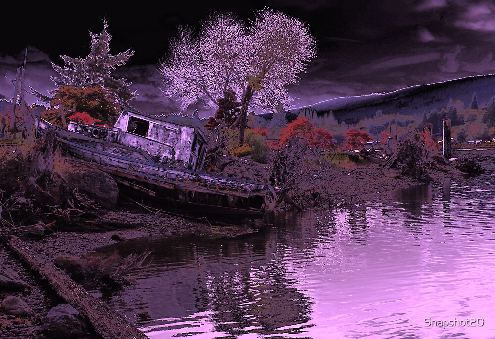 Shipwrecked by Snapshot20