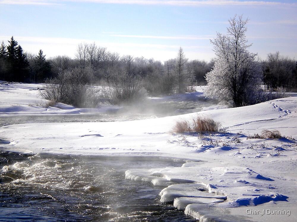 winter stream by Cheryl Dunning