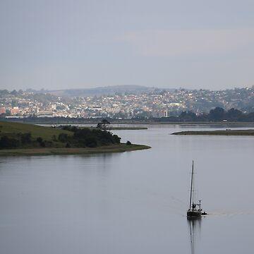 Tasmania - Tamar River by varmifsud