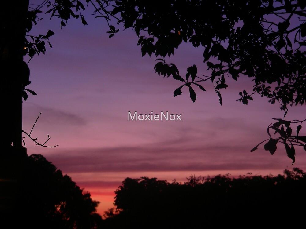 Lavender Dreaming.. by MoxieNox