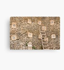 Holding wall Canvas Print