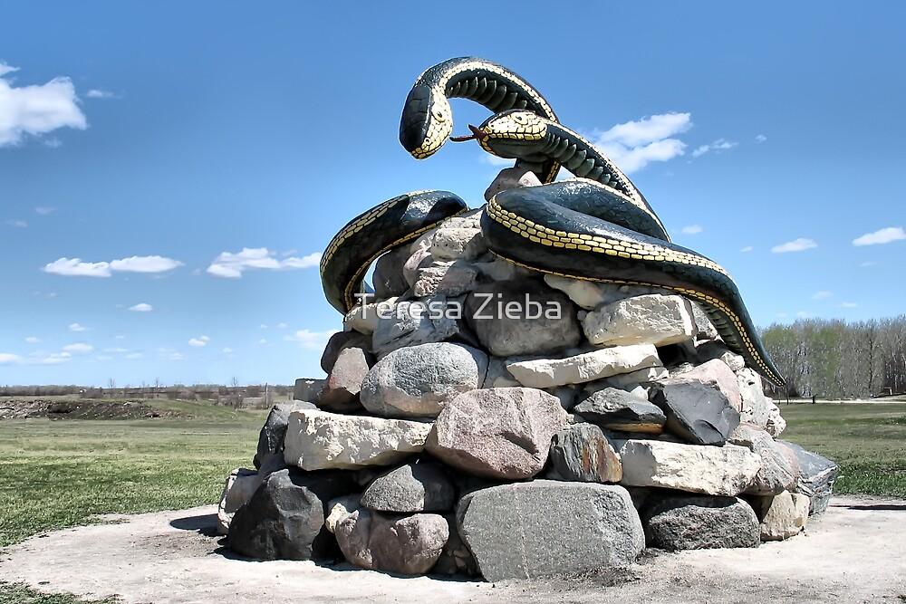Sam & Sara The Garter Snakes by Teresa Zieba