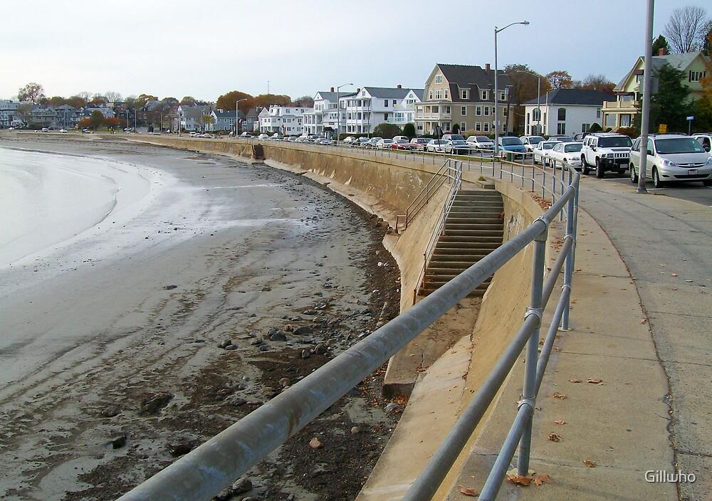 A New England Coastline  by Gillwho
