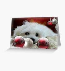 Hermes at Christmas Greeting Card
