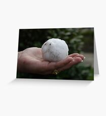 Giant hailstone Greeting Card