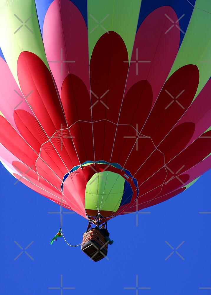 Flying In Technicolor by CarolM