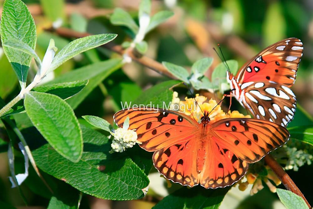 Butterfly Buds by Wendy Mogul