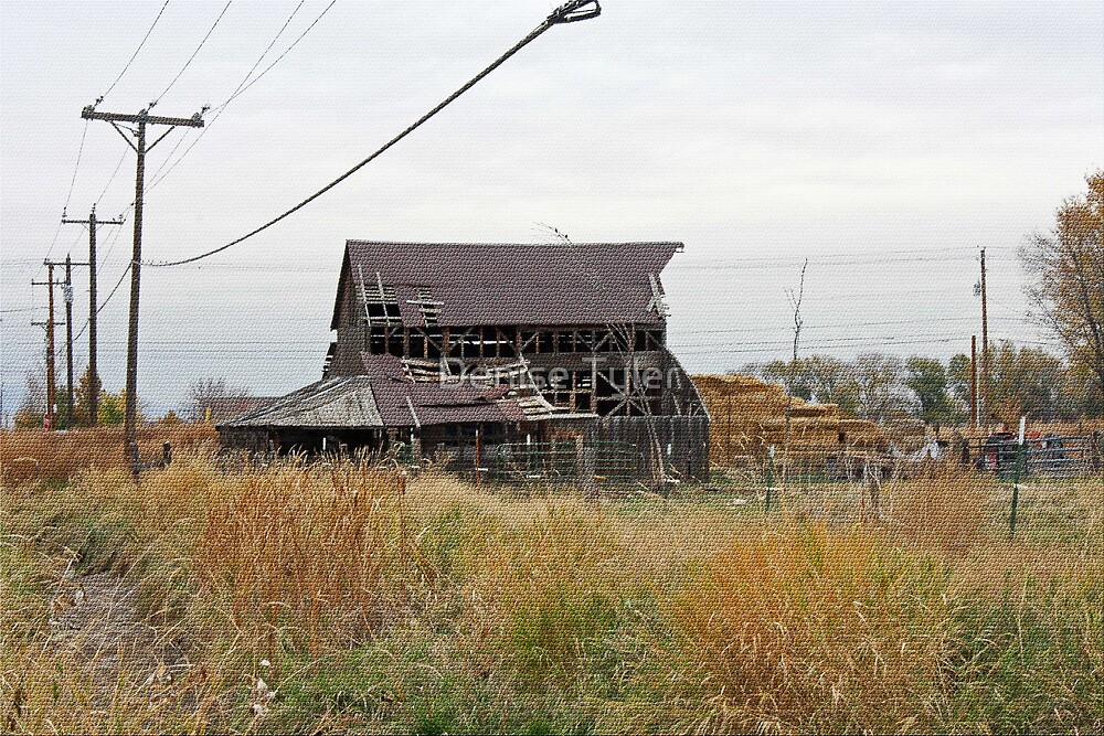 Old Barn on Linder Road3 by Denise Tyler