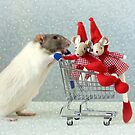 Wintershopping  by Ellen van Deelen
